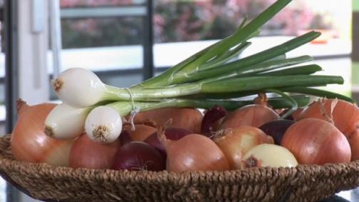 Kochen mit Schweizer Zwiebeln: wie man sie schneidet und lagert