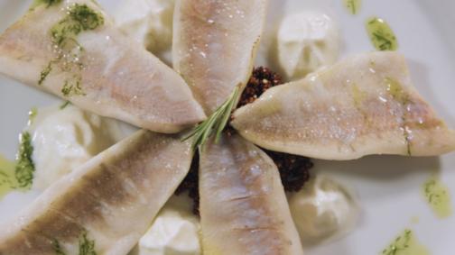 Filets de perche au quinoa soufflé, à l'espuma de choucroute et à l'huile à l'aneth