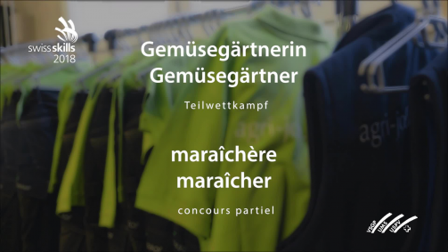 SwissSkills Teilwettkampf Gutknecht August 2018