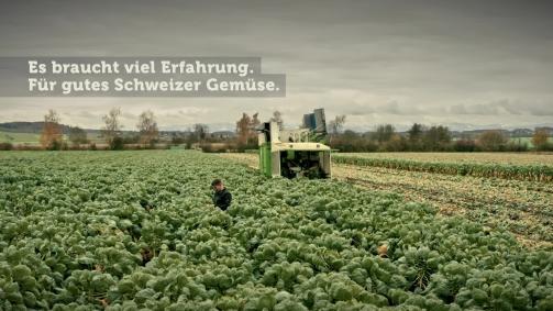November: Es braucht viel Erfahrung. Für gutes Schweizer Gemüse