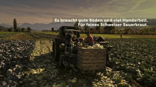 Oktober: Es braucht gute Böden und viel Handarbeit. Für feines Schweizer Sauerkraut.