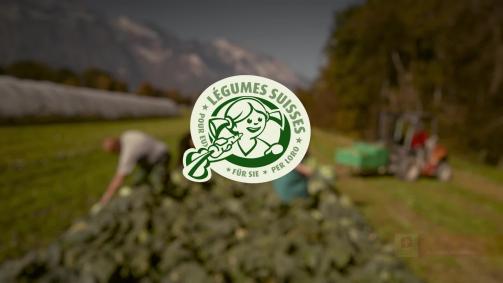 Oktober: Es braucht Liebe und Sorgfalt. Für gutes Schweizer Gemüse.