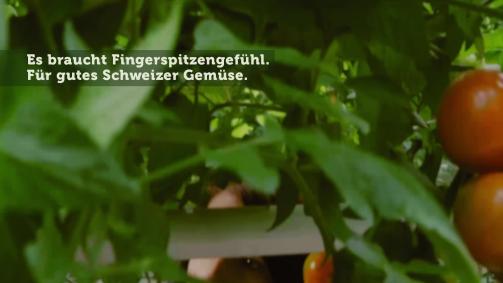 April: Es braucht Fingerspitzengefühl. Für gutes Schweizer Gemüse.