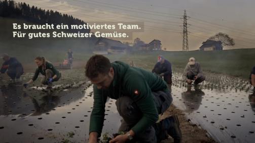 April: Es braucht in motiviertes Team. Für gutes Schweizer Gemüse.