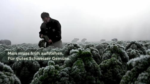 Januar: Man muss früh aufstehen. Für gutes Schweizer Gemüse.